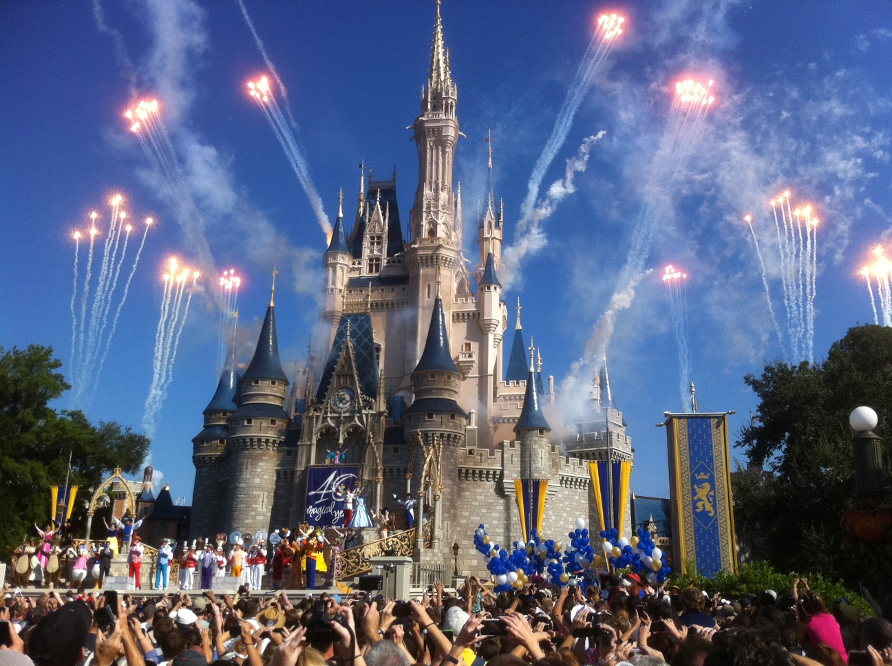 Learn and Earn in Rollins College and Disney World