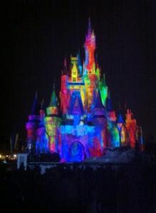 Celebrate the Magic at the Magic Kingdom