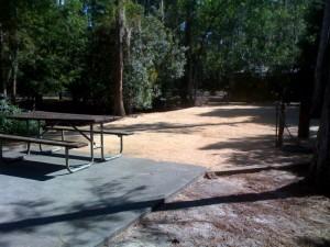 Disney's Fort Wilderness Resort Campsite