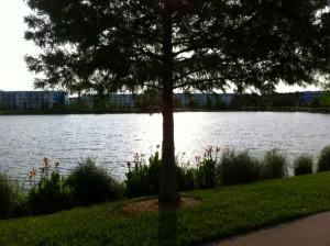 Lake View Disney's Pop Century Resort