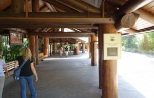Bus Stop Disney's Animal Kingdom Lodge from yourfirstvisit.net