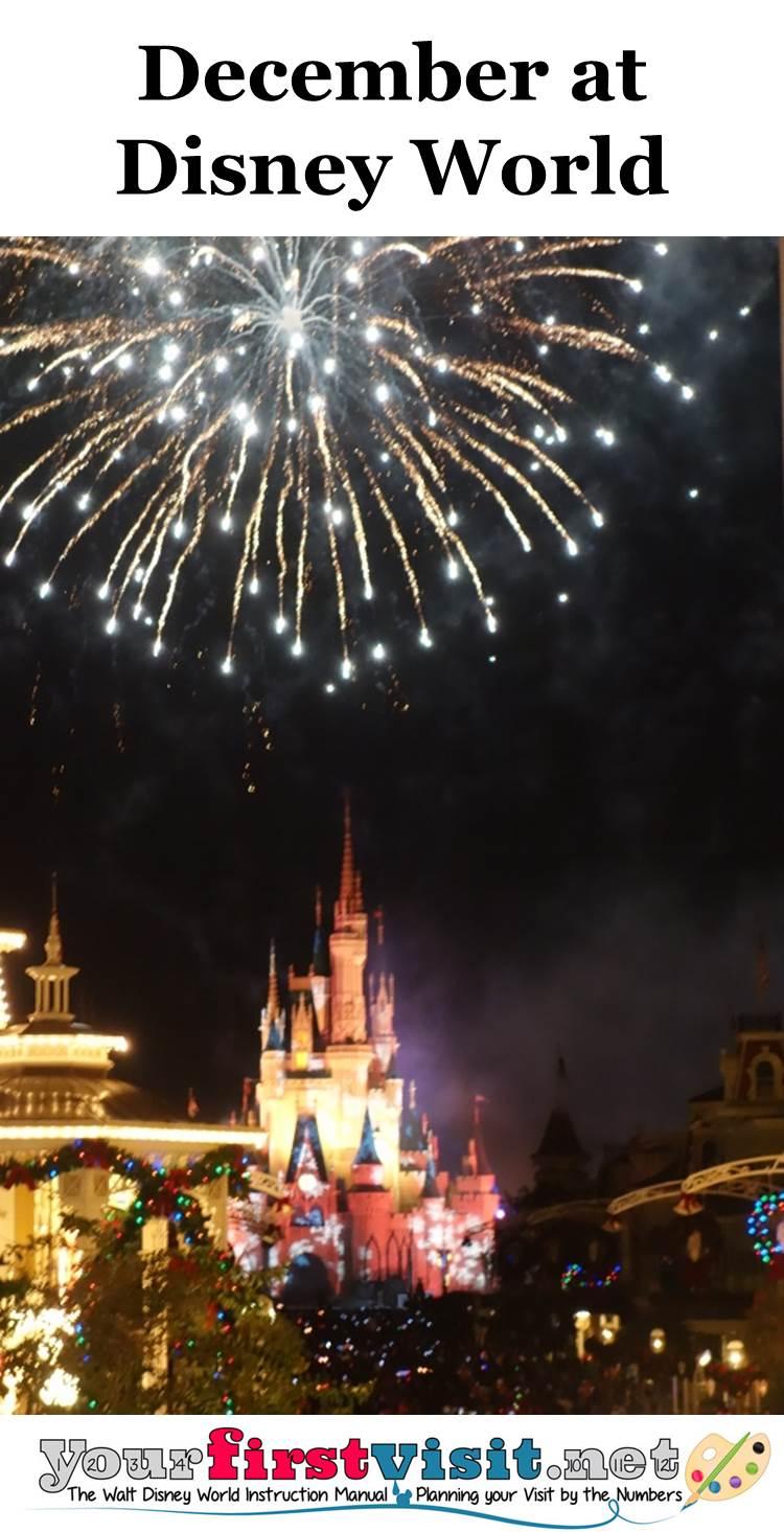 December 2015 at Walt Disney World from yourfirstvisit.net