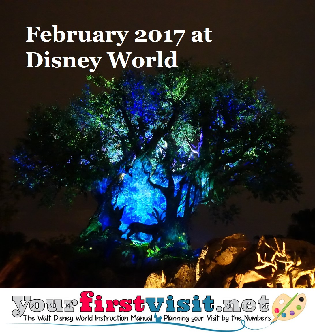 February 2017 at Walt Disney World from yourfirstvisit.net