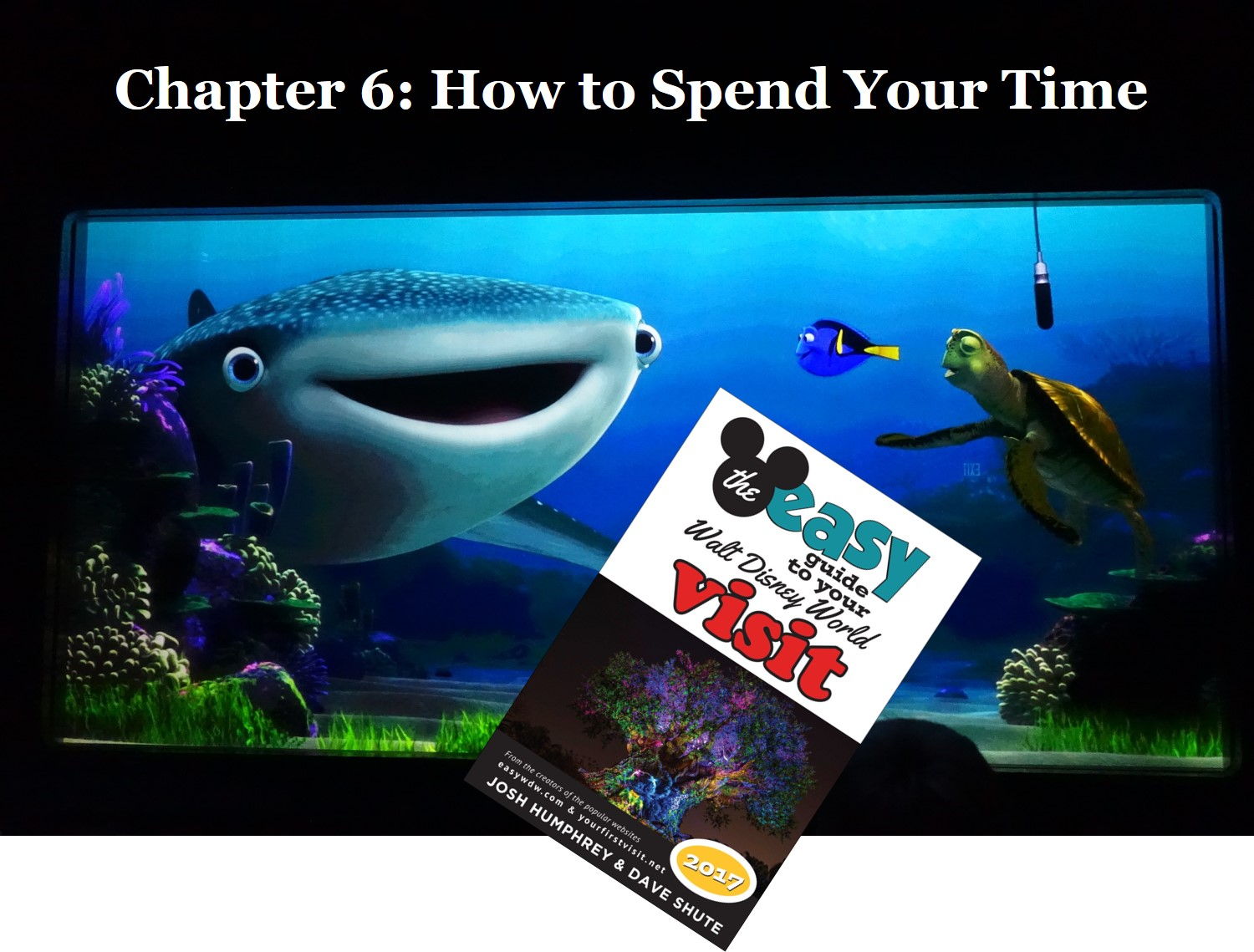 chapter-6-of-the-easy-guide-how-to-spend-your-time