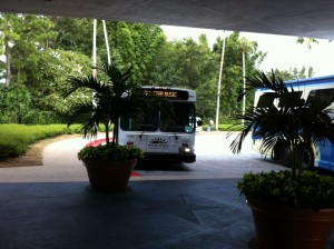 Bus to Music from Disney's All-Star Sports Resort