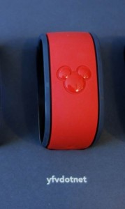 Liking the Name on This MagicBand