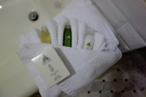 Toiletries Second Bedroom at Disney's Grand Floridian Resort & Spa from yourfirstvisit.net