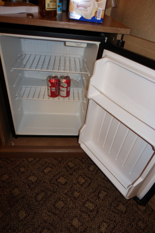 Mini Fridge Disney's Animal Kingdom Lodge from yourfirstvisit.net