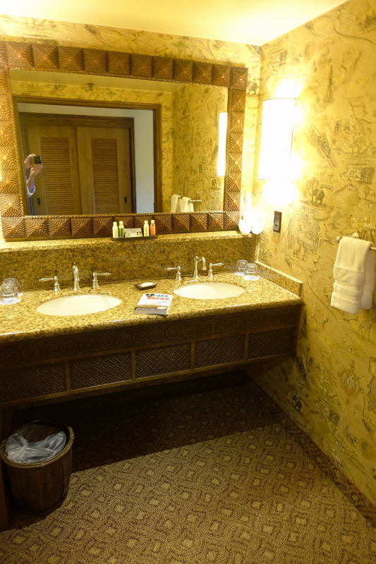 Sinks Disney's Animal Kingdom Lodge from yourfirstvisit.net