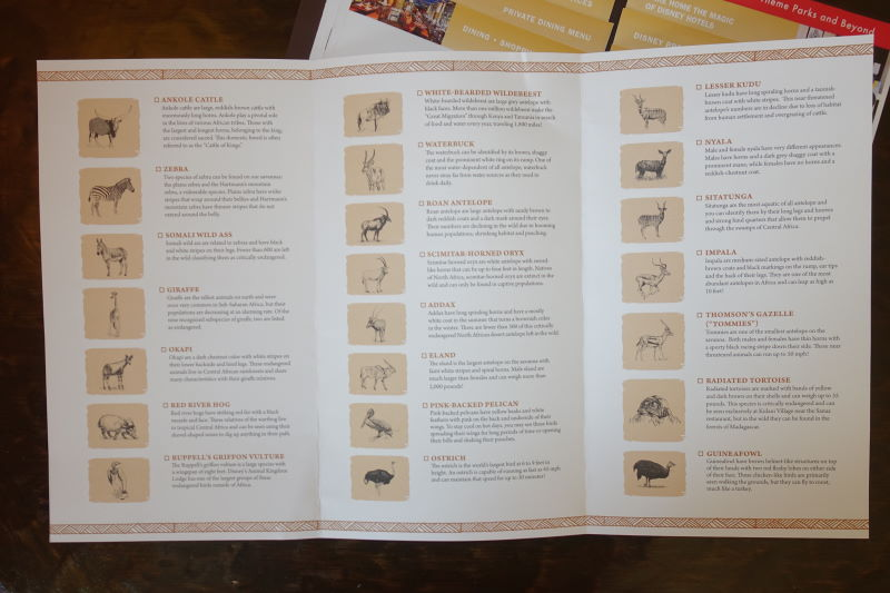 Spotting Guide Details Disney's Animal Kingdom Lodge from yourfirstvisit.net