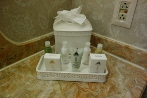 Things to Prevent Balding at Disney's Grand Floridian Resort & Spa from yourfirstvisit.net