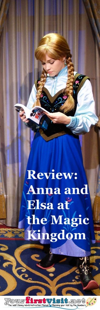 Review - Anna and Elsa at the Magic Kingdom