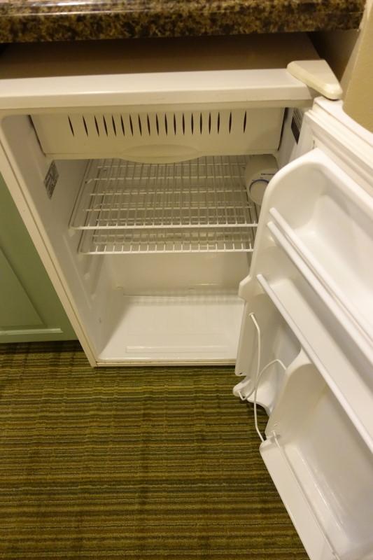 mini-fridge-saratoga-springs-studio-from-yourfirstvisit-net