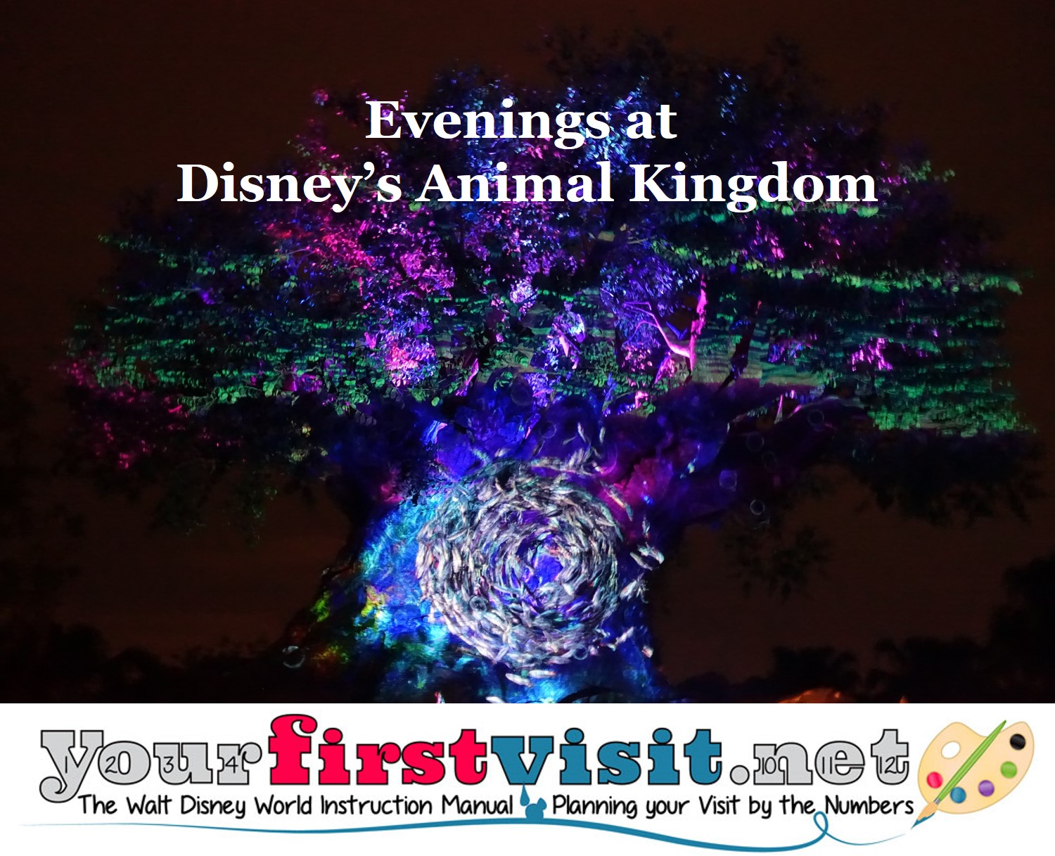 Evenings at Disney's Animal Kingdom from yourfirstvisit.net