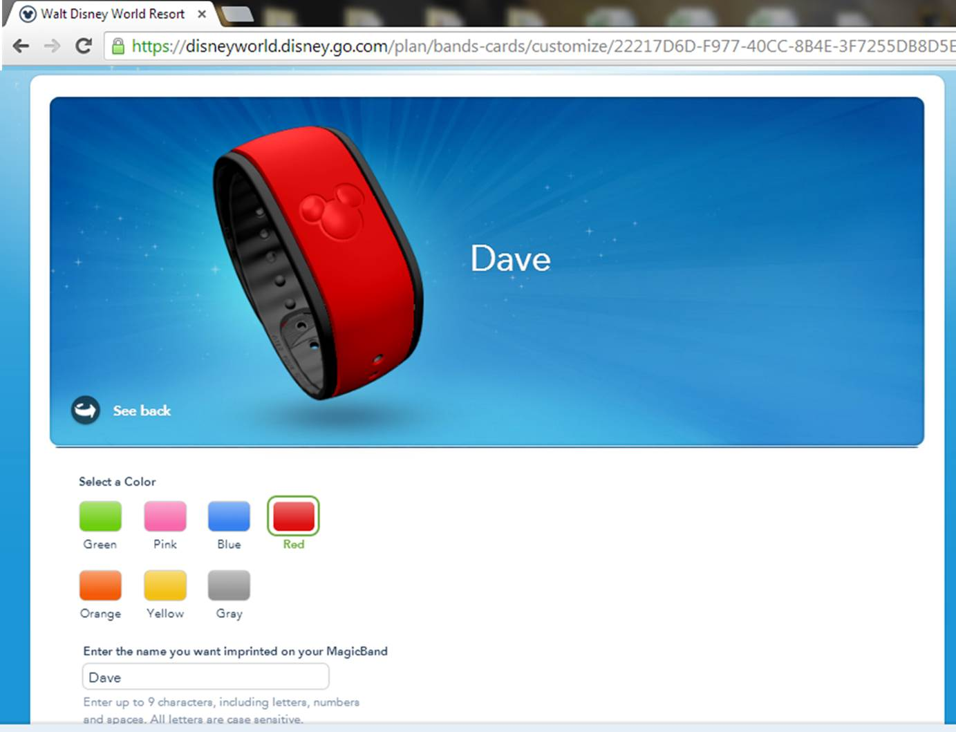 Customizing MagicBands