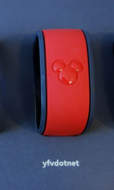 Liking-the-Name-on-This-MagicBand