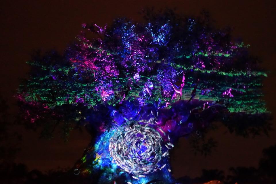 Tree of Life Awakenings from yourfirstvisit.net (3)