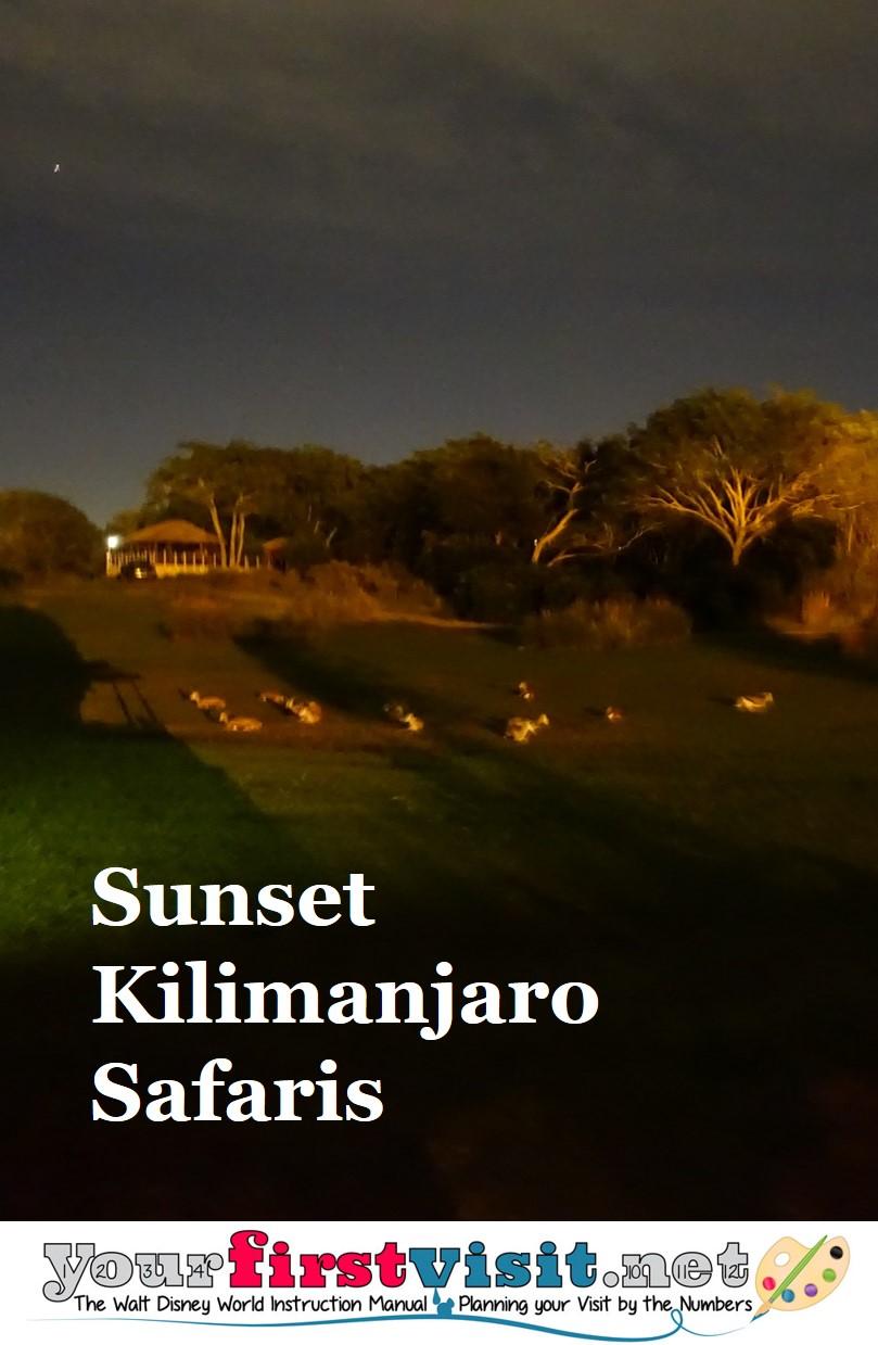 Review - Sunset Kilimanjaro Safaris from yourfirstvisit.net